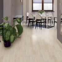 Vario-Premium-Plus-Laminat-Parke_69afec14355ad3c29b61234f29789dfd_1