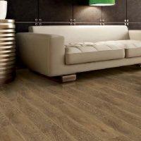 Vario-Premium-Plus-Laminat-Parke_cf690dd4da3059d1a7d6342293a35bdf_1